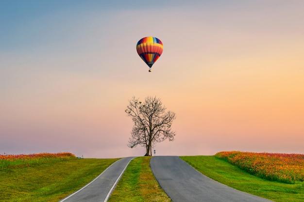 Eenzame boom met hete luchtballon die op heuvel in avond vliegt