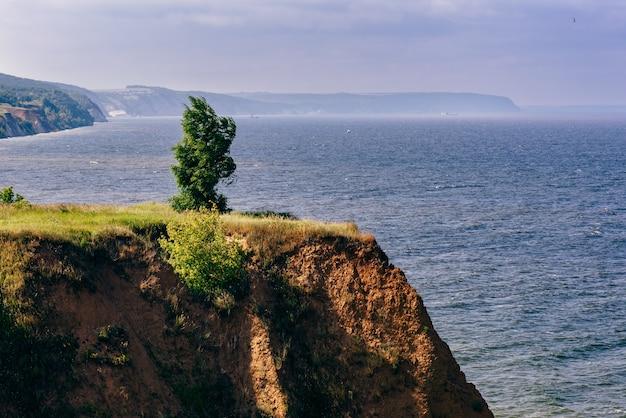Eenzame boom op klif naast de rivier bij winderig weer