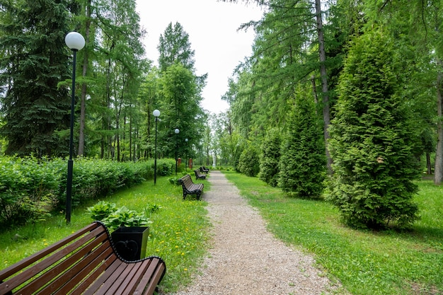 Eenzame houten bank in het park in de zomer