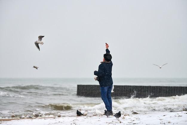 Eenzame oude man die meeuwen, meeuwen en andere vogels voedt op zee. achteraanzicht van persoon, bewolkt winterlandschap.