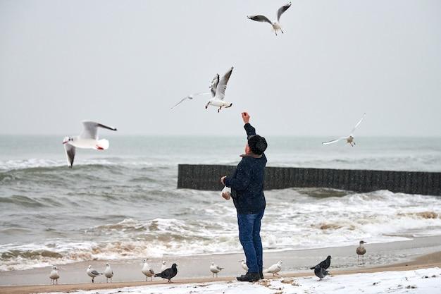 Eenzame oude man die meeuwen, meeuwen en andere vogels voedt op zee