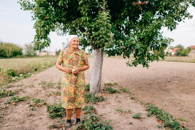 Eenzame oude vrouw met groene appel in handen die zich in tuin voor appelboom bevinden.