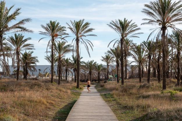 Eenzame persoon die op een promenade loopt omringd door palmbomen