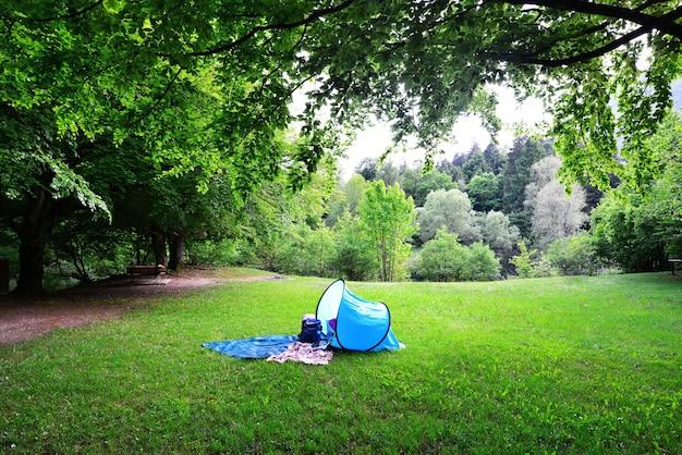 Eenzame toeristentent in het pittoreske bos zelfisolatie in de natuur