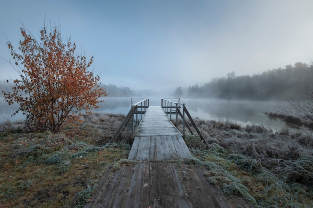 Eerste vorst op een bos mistig meer met een pier, herfstlandschap