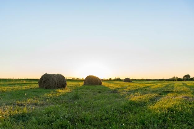 Eerstelingsgarve van hooi op het gebied bij zonsondergang