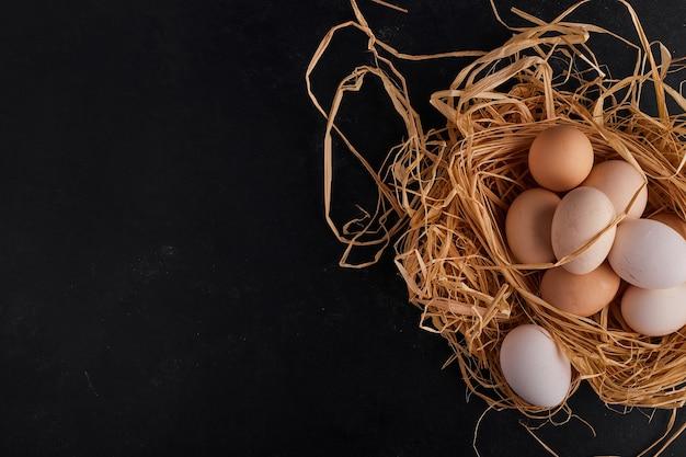 Eieren in het nest op zwarte ruimte.