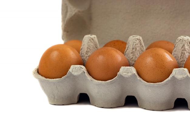 Eieren in papierlade op wit wordt geïsoleerd