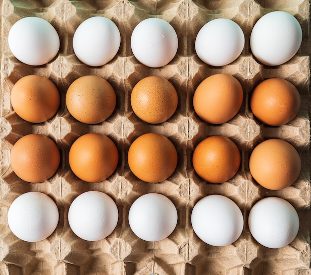 Eieren patroon op het net voor eieren, plat lag.