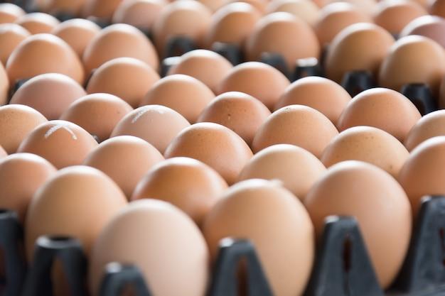 Eieren van kippenboerderij in het pakket