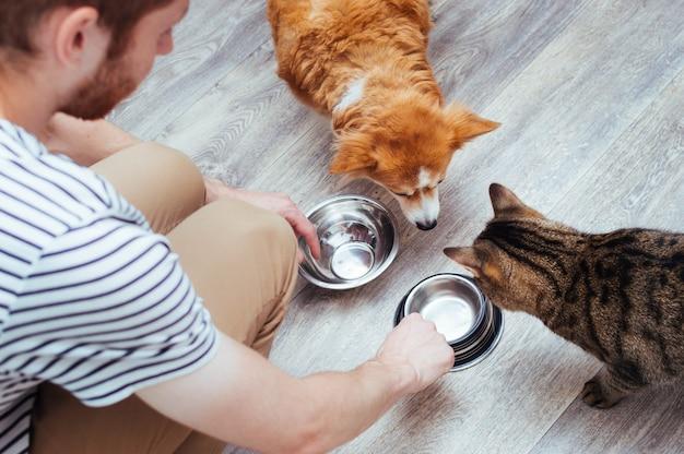 Eigenaar voedt de hond en de kat samen. twee lege kommen. keuken. detailopname. voedsel voor huisdieren