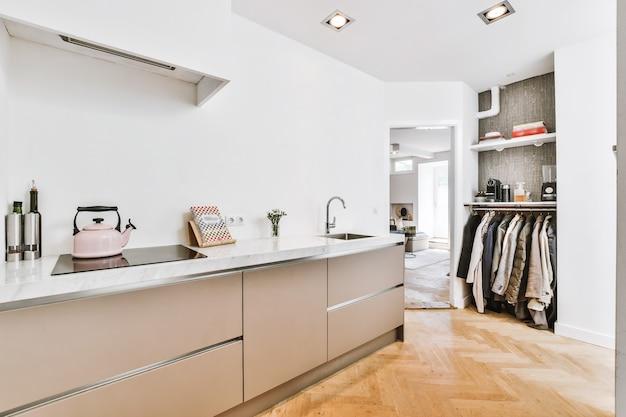 Eigentijds interieur van keuken met meubels en toestellen in minimalistische stijl in ruime flat