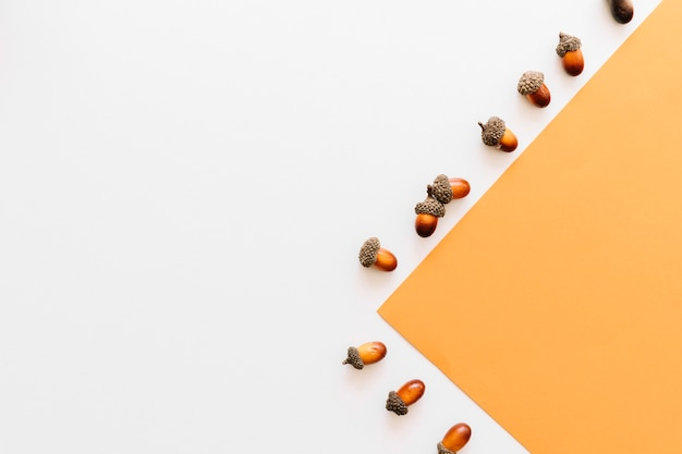 Eikels die zijn ontworpen op basis van een oranje papierrandkader op een wit oppervlak