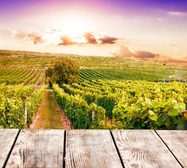 Eiken vat over wijngaarden op de achtergrond. wijnmakerij concept
