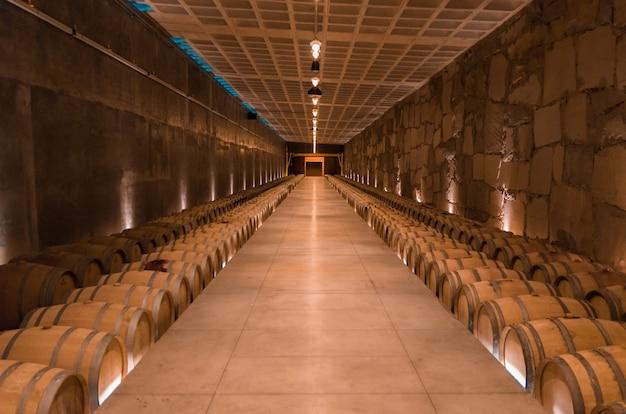 Eikenhouten vaten voor wijnrijping in een ondergrondse kelder in vale dos vinhedos