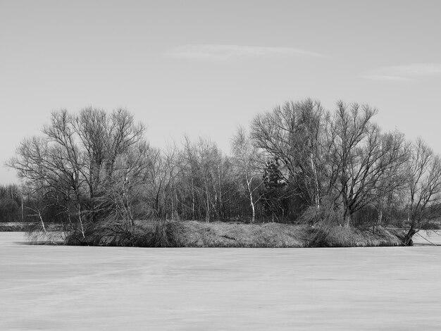 Eiland met lenteriet omgeven door bevroren ijsachtergrond