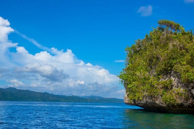 Eilanden van indonesië. raja ampat. de rand van een rotsachtig eiland, begroeid met tropische vegetatie