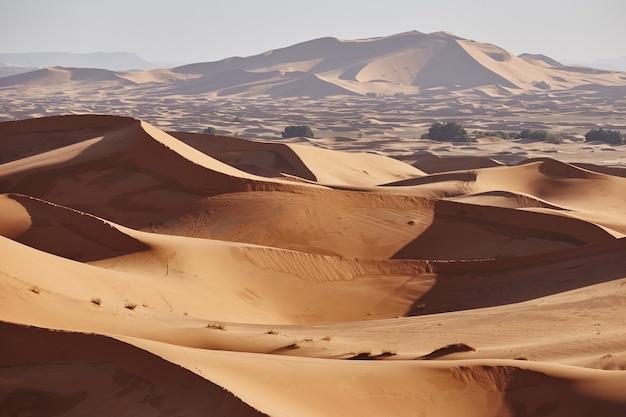 Eindeloos zand van de sahara-woestijn. prachtige zonsondergang over zandduinen van de sahara, marokko, afrika Premium Foto