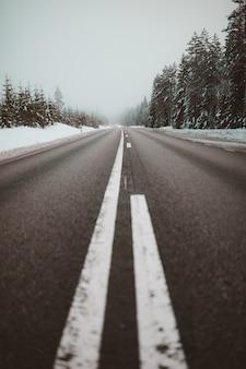 Eindeloze weg omgeven door bomen in sneeuw gevangen in zweden