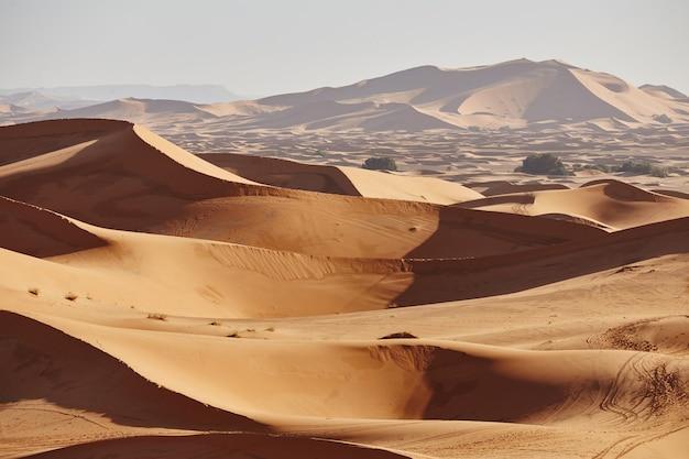 Eindeloze zandstranden van de sahara-woestijn. prachtige zonsondergang over zandduinen van de sahara, marokko, afrika