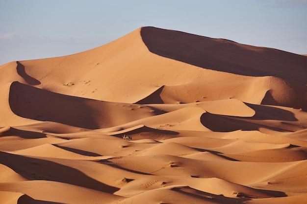 Eindeloze zandstranden van de sahara-woestijn