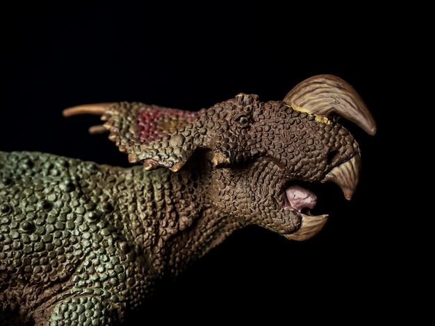 Einiosaurus dinosaurus op zwart