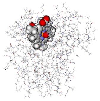 Eiwitmyoglobine met heem getoond in ballen
