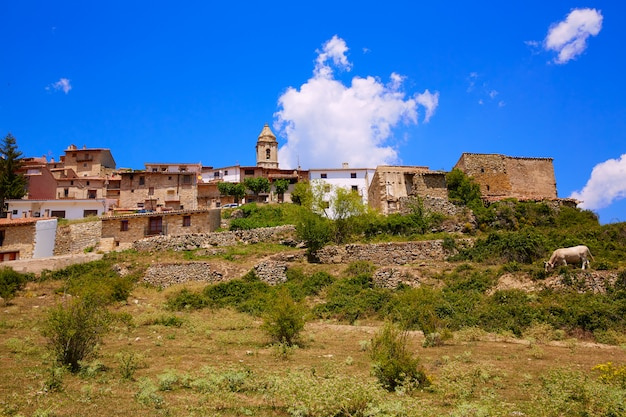 El boixar-dorp in tinenca benifassa van spanje