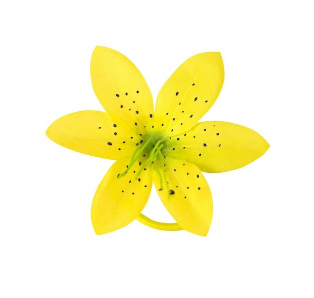 Elastische haarband of scrunchy met gele bloem die op witte achtergrond wordt geïsoleerd