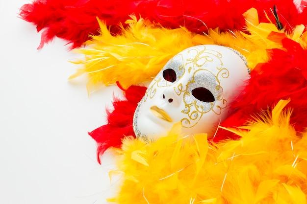Elegant carnaval masker en veren