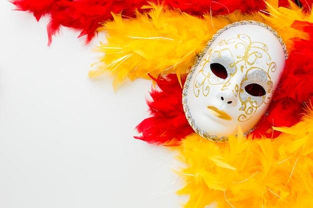 Elegant carnaval masker met veren