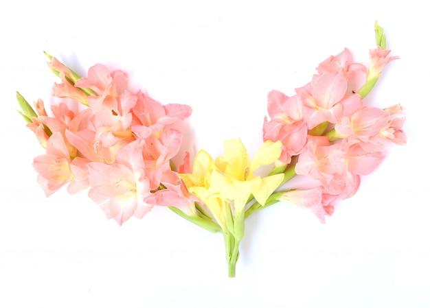 Elegante lichtrose bloemen multifunctionele achtergrond