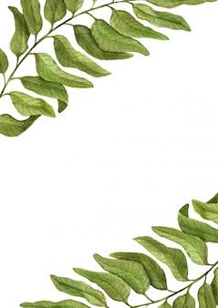Elegante vintage uitnodiging en elementen van aquarel plantkunde. wenskaart met hand getrokken aquarel tak op een witte achtergrond.