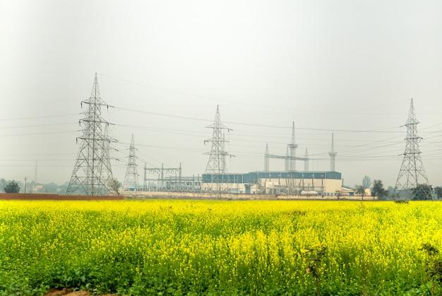 Elektriciteitsstation met hoogspanningselektriciteitspool met mosterdbloem.