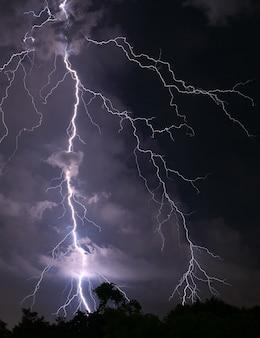 Enge echte blikseminslag over het bos 's nachts
