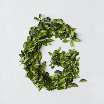Engels alfabet concept. alfabet geïsoleerd. abc letters van groene bladeren. letter g vertegenwoordigd met groene bladeren. symbool g op wit.
