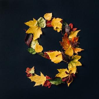 Engels alfabet gemaakt door herfstbladeren. natuurlijke kleuren lettertype voor ontwerp. cijfer negen op zwarte achtergrond. bovenaanzicht. ruimte kopiëren. plat leggen