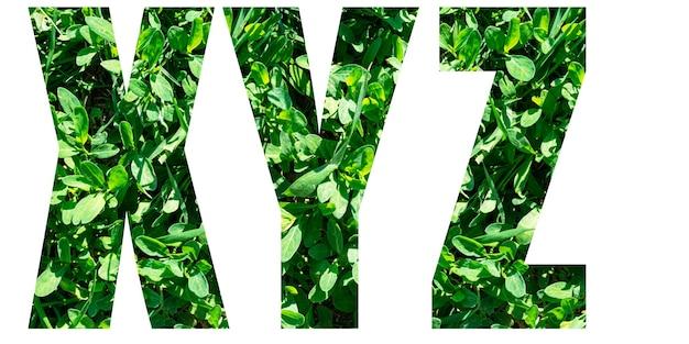 Engelse alfabetletters instellen. brieven xyz van groen gras geïsoleerd op een witte achtergrond. elementen voor uw ontwerp.