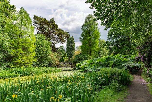 Engelse openbare tuin in de zomer