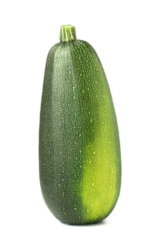 Enige groene courgette die op wit wordt geïsoleerd