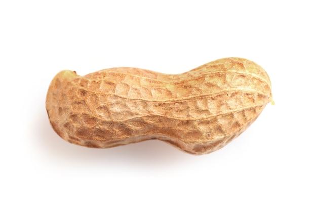Enige pinda in notendop die op wit wordt geïsoleerd