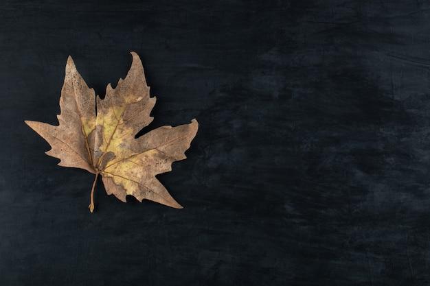 Enkel gedroogd blad op zwarte tafel.