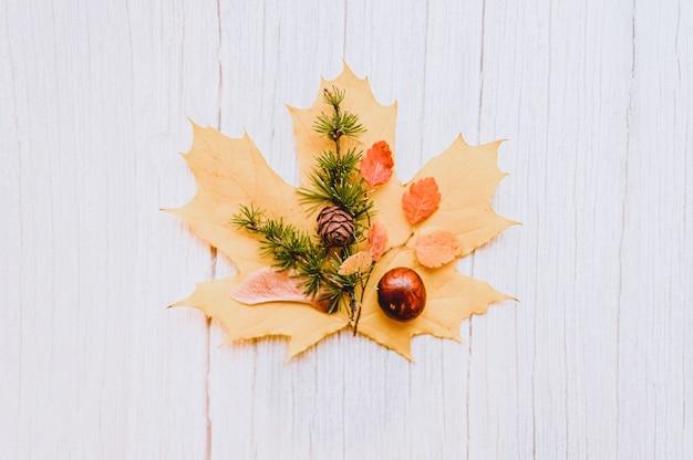 Enkel rood en geel droog herfst esdoornblad, bovenop zijn kastanjes, esdoornzaden en een takje lariks met kegels, op een beige houten achtergrond. herfstconcept, plat gelegd
