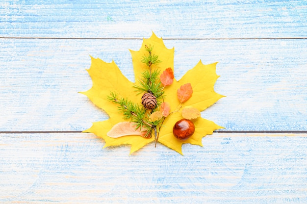 Enkele rode en gele droge herfst esdoornblad, bovenop hen zijn kastanjes, esdoornzaden en een takje lariks met kegels, op een blauwe houten achtergrond. herfstconcept, plat gelegd