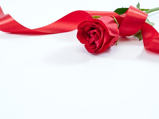 Enkele rode roos met rood lint. valentijnsdag concept