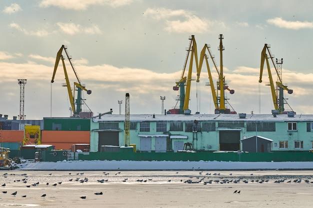 Enorme havenkranen in zeehaven. havenkranen voor zware ladingen in de haven, vrachtcontainerwerf, containerschipterminal. zaken en commercie, logistiek