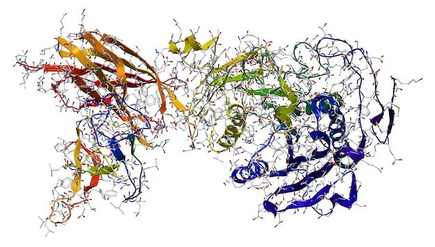 Enzym pancreas lipase-colipase complex