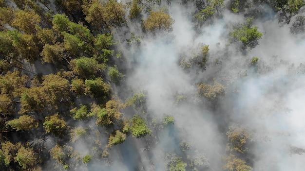Epische luchtfoto van rokend wild vuur. grote rookwolken en vuur verspreiden zich. ontbossing van bossen en tropische jungle. bosbranden in de amazone en siberië. droog gras verbrandt. klimaatverandering, ecologie, aarde