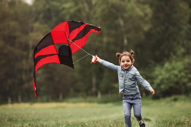 Er komt een sterke wind aan, het is goed. gelukkig meisje in spijkerbroek met vlieger in het veld. prachtige natuur