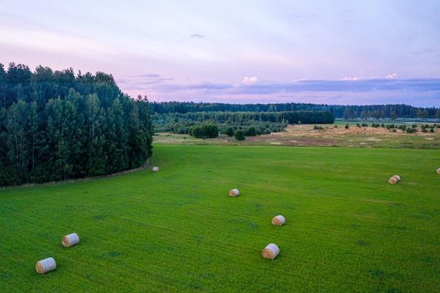 Erial uitzicht op hooibroodjes in het tarweveld op zonsondergang tijd